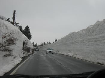 酸ヶ湯 雪の回廊 1
