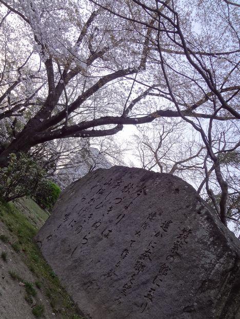 福岡城さくらまつり・5(20120331)