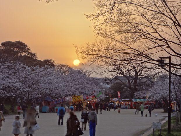 福岡城さくらまつり・3(20120331)