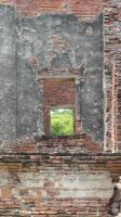 ワットプラシーサンペット 窓の向こうに1