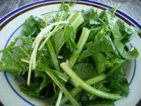 地元の春野菜
