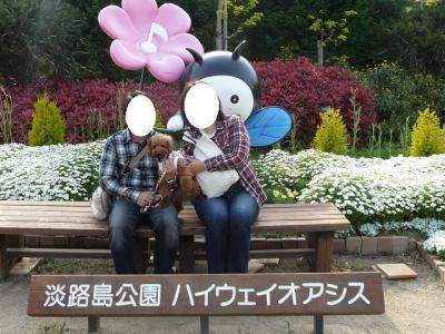 公園nicoちゃん