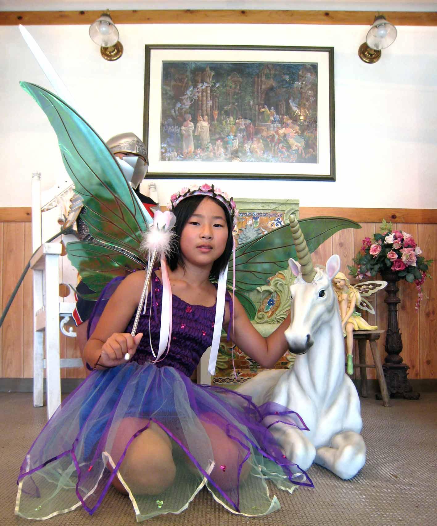 妖精とユニコーン