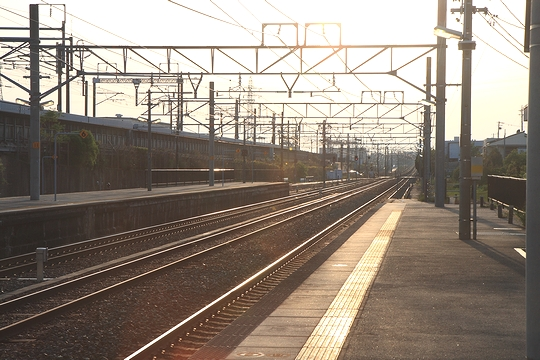 20090502_4624s.jpg