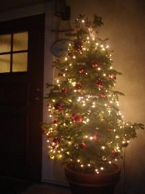 クリスマスツリー 003