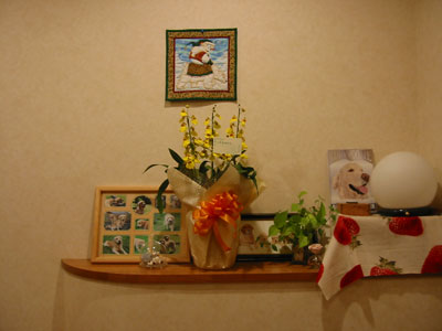 2008-12-8g.jpg