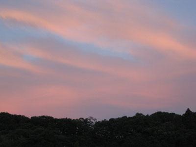 2009-07-16a.jpg