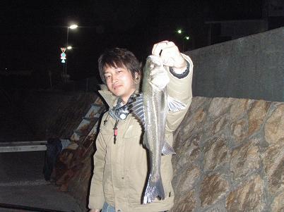 2009033116.jpg