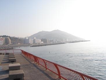 200904102.jpg