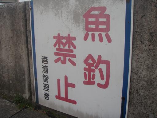 2010031307.jpg