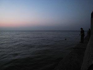 潮通しの良い場所