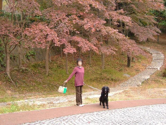 生田緑地10