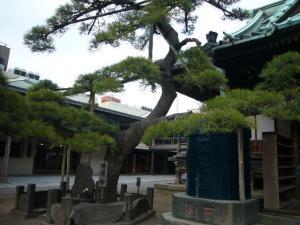 20080304葛飾八幡宮 帝釈天14