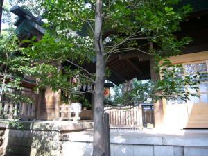 田無神社6