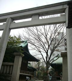20080319鉄砲稲荷9