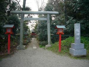 20080325鷲宮神社13
