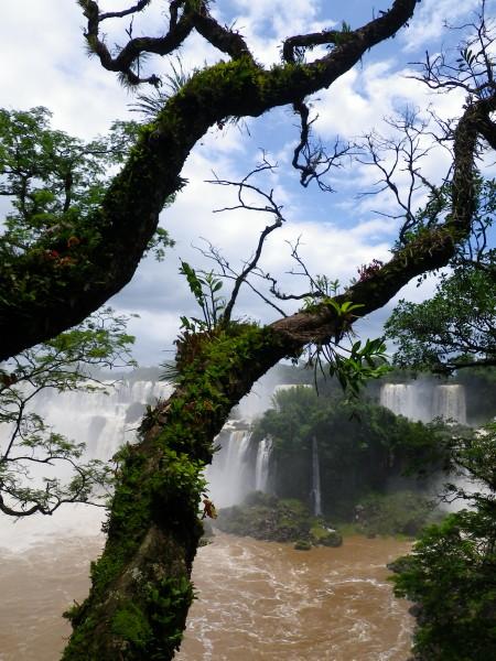 20101216_04_Puerto_Iguazu.jpg
