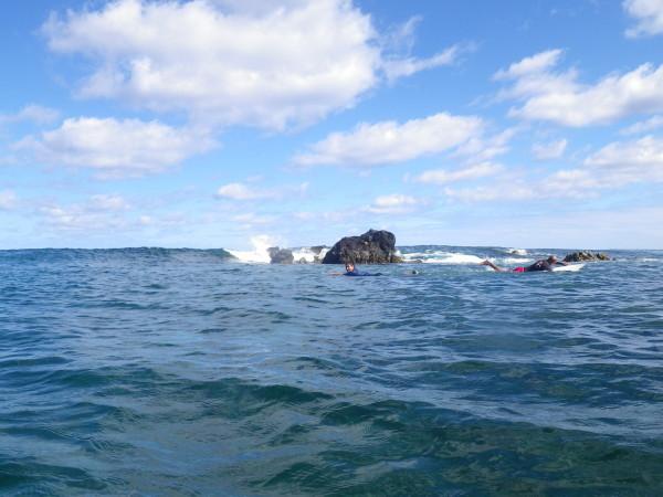 20110309_04a_Easter_Island.jpg