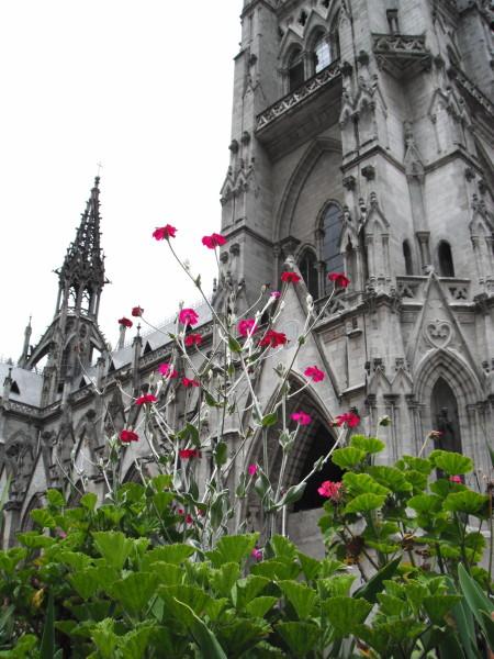 20110408_14_Quito_Basilico.jpg