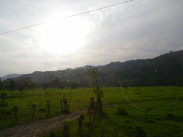20110530_02.jpg