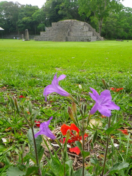 20110531_05_Copan_Ruinas.jpg