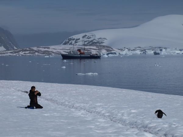 991_Antarctica_Highlight (by Yuji)