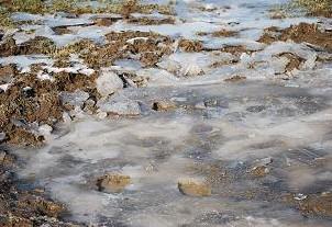 12・氷点下・凍った水溜り