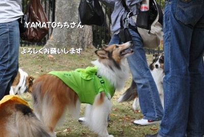 秋のオフ会 お YAMATOちちさんよろしくです