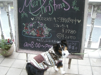 21.12.23 アルバイト希望のよつばちゃん