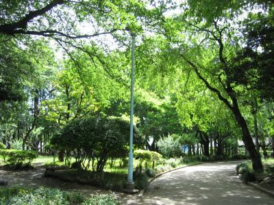 2011 05 31 通園梅雨
