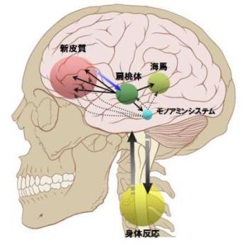 共感脳-2