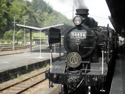 P5040645.jpg