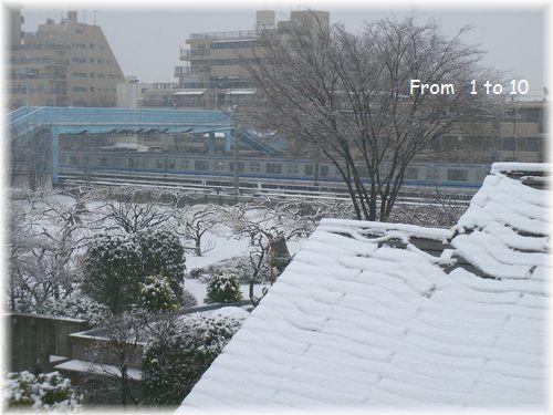 3月7日 雪