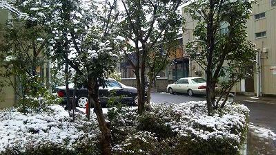 3月の雪・1