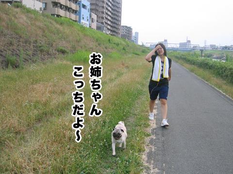 20110703_2.jpg
