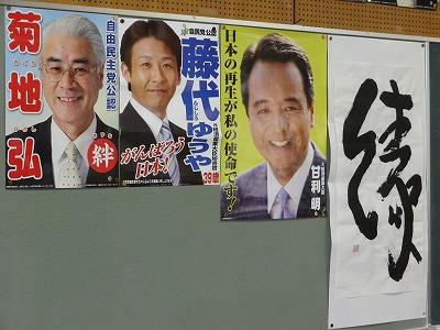 2012新春菊06