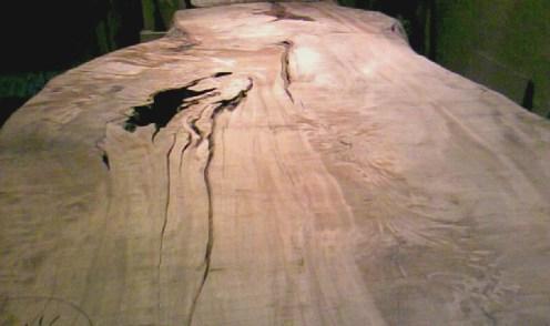 天板、トチの木。