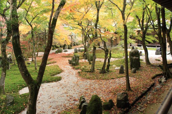光明禅寺(こうみょうぜんじ)別名「苔寺」