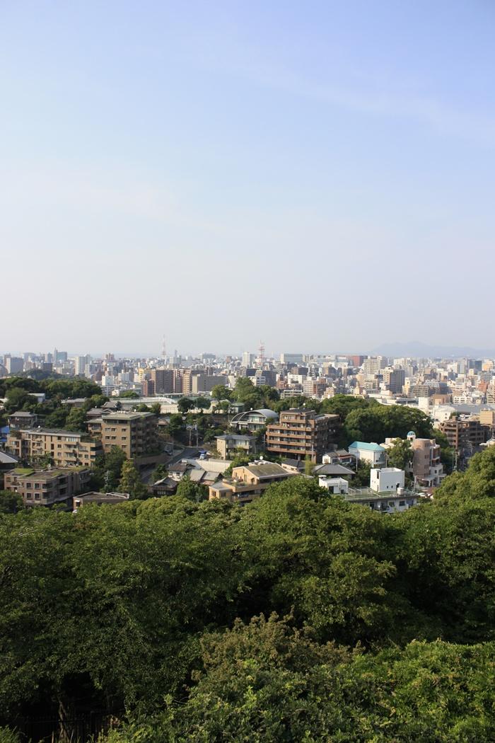福岡市植物園の展望台
