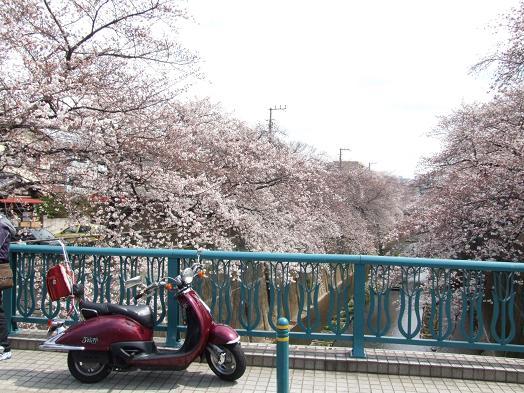 2010_0402戸田別館 0006