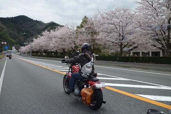 2010_0408戸田別館 0029