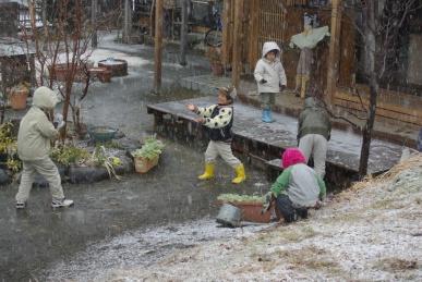 お庭で雪あそび