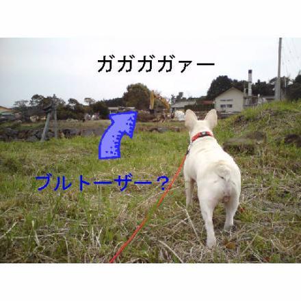 豌励↓縺ェ繧祇convert_20090323180018