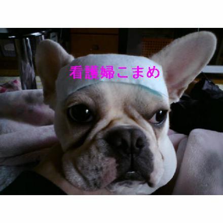 逵玖ュキ蟀ヲ縺輔s_convert_20090325231300