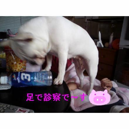 雜ウ縺ァ_convert_20090325231859