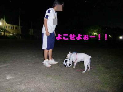 縺翫・縺医→_convert_20090603004835