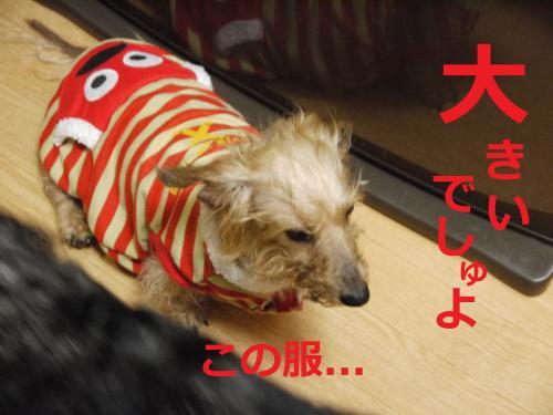 078_convert_20110905084557.jpg
