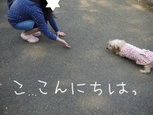 198_convert_20110301140423.jpg