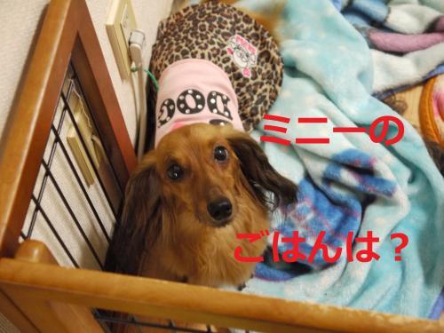 009+-+繧ウ繝斐・_convert_20110824095303