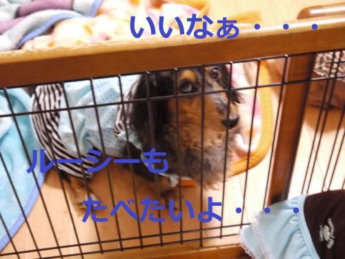 012+-+繧ウ繝斐・_convert_20110824095327